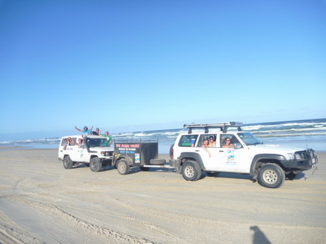 travel info about fraser island from pelican 4wd. Black Bedroom Furniture Sets. Home Design Ideas